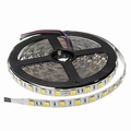 PRO LED Strip 5025 3000K-6000K CCT 24V, IP20