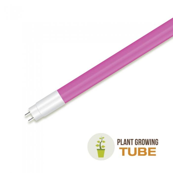 LED TL8 / TL5 buizen